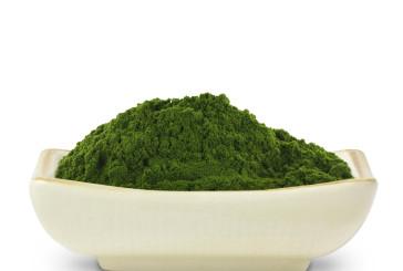 barley-green-magma1